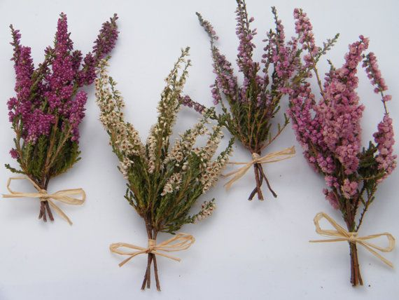 Small dried lucky heather flowers.    A hand-tied posy of Scottish heather available in four natural colours (L-R in image): purple, white, lavender,