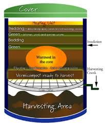 Image result for vermiculture