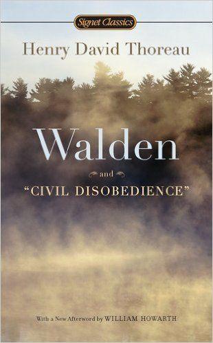 down essay henry introductory river thoreau walden A summary of economy in henry david thoreau's walden perfect for acing essays, tests the first chapter of walden offers an introduction to the oddball.