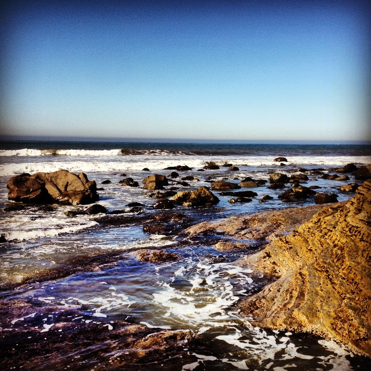 17 best images about tidepools on pinterest bali for Tides for fishing san diego