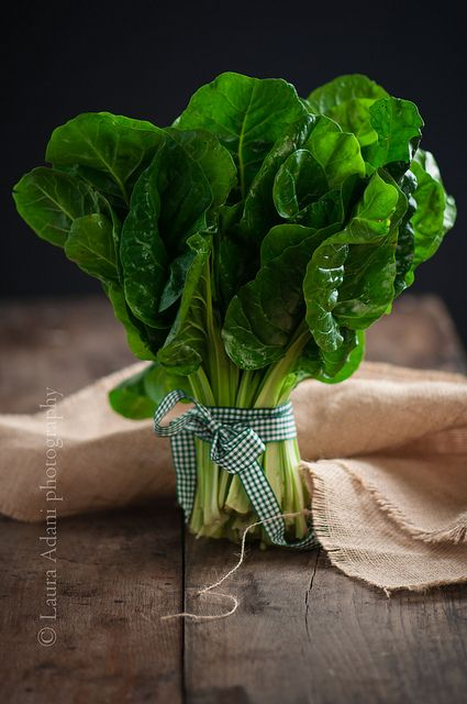 a bouquet of chard by Laura Adani on Flickr.