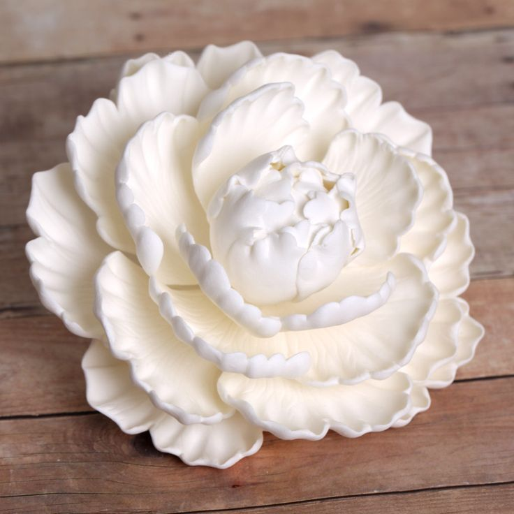 White Closed Gumpaste Peony sugarflower cake toppers perfect for cake decorating rolled fondant wedding cakes and birthday cakes. CaljavaOnline.com
