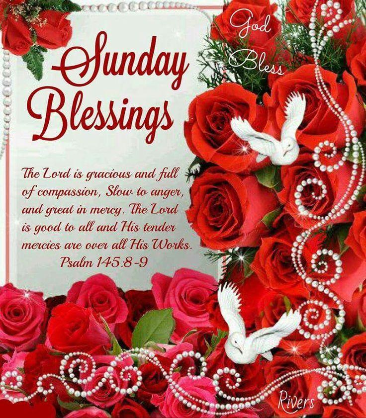 Sunday Blessings good morning sunday sunday quotes blessed sunday sunday…