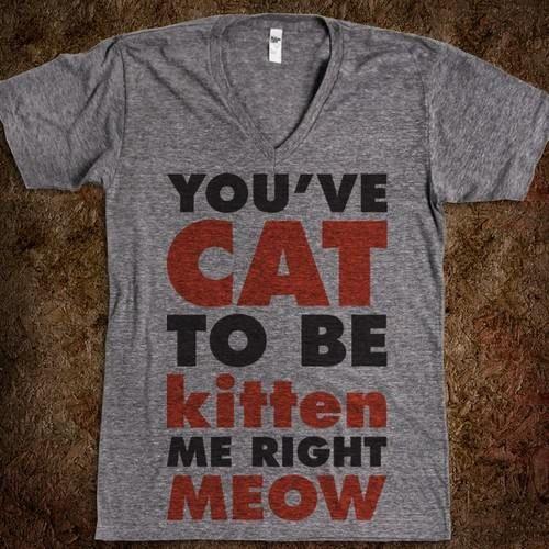 punny cat shirt -to all my cat ladies! @Mandy Bryant Lintner @Danielle Lampert David @Jenn L Doerr