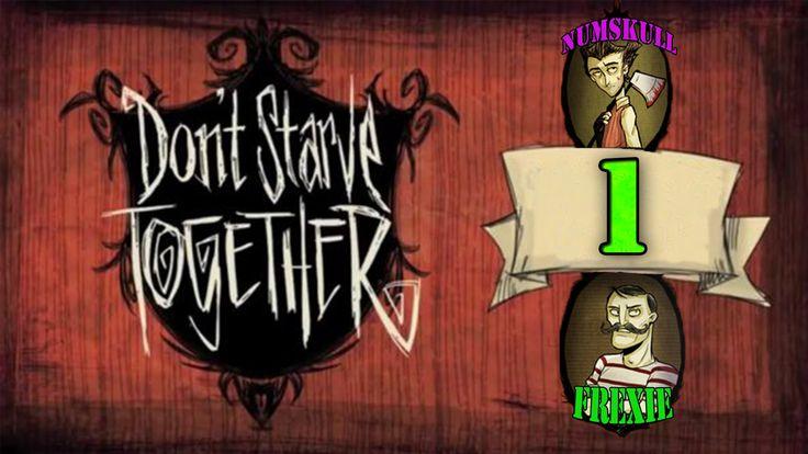 Let's Dont Starve Together with Numskull Episode 1 - [Food]