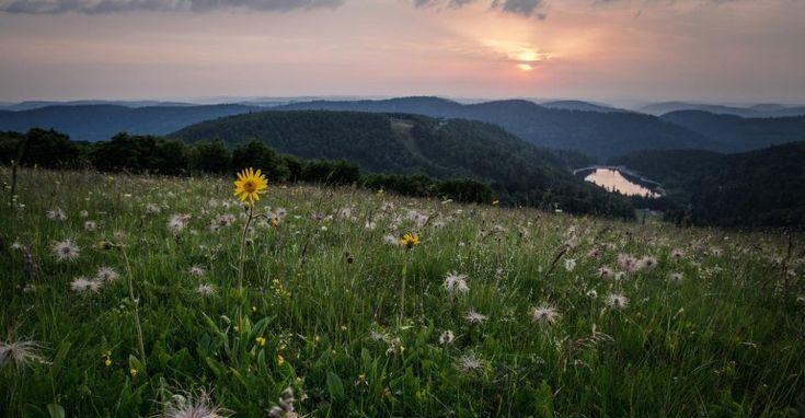 Le surnom du paradis est Hautes Vosges