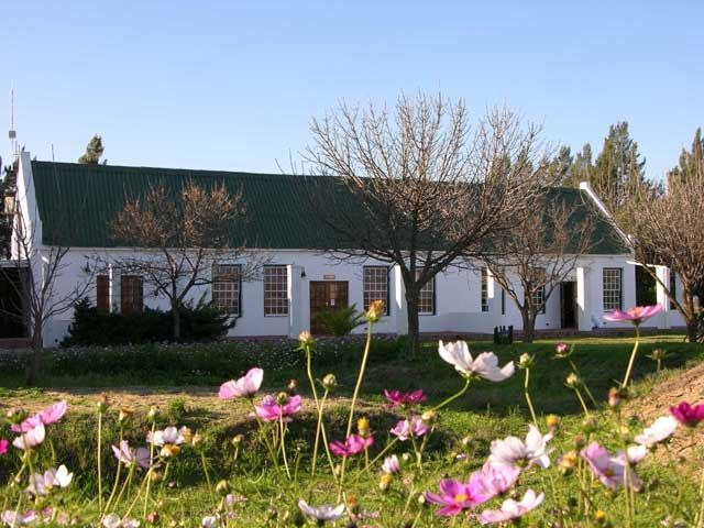Visit us in Spring time and see all the flowers in bloom!  Nothing beats the beauty of the Boland ( in South Africa) in spring time.