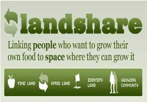 """Gardening Allotments Lead to """"Staggering"""" 51% Fall in Anti-social Behaviour"""