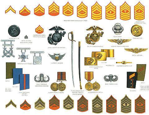 Enlisted Insignia (grade, branch of service, breast ...