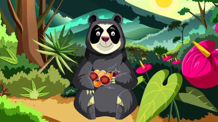 oso de anteojos ilustracion - Google Search