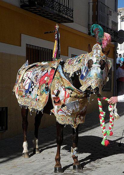 Llegan las fiestas de Caravaca este próximo fin de semana, con los caballos del vino y los desfiles de moros y cristianos.