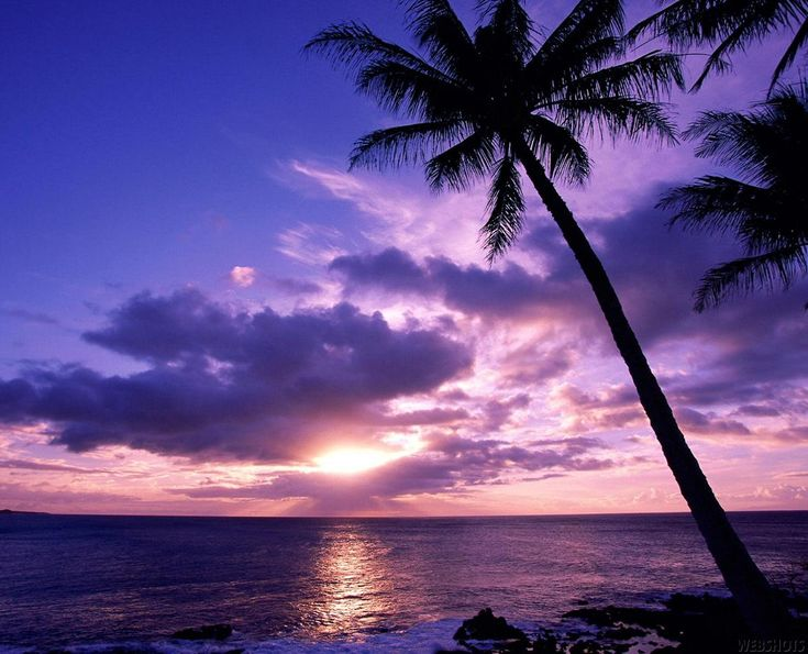 We're losing ourselves in this gorgeous Hawaiian sunset.