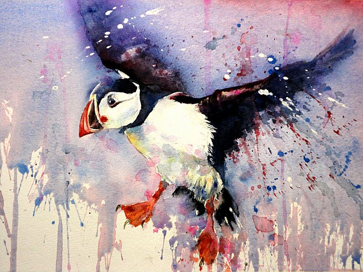 """""""Puffin"""" by Gerard Hendriks"""