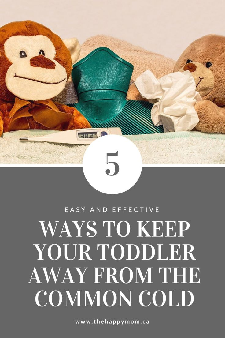 Flu season is upon us! Use these 5 strategies to prevent the common cold in toddlers.