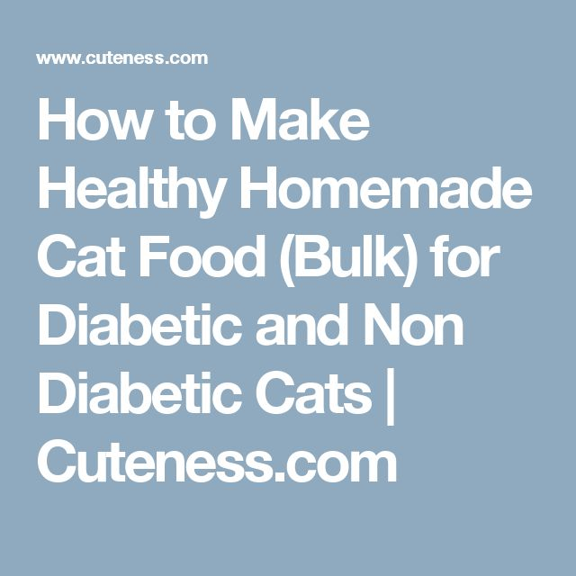 How to Make Healthy Homemade Cat Food (Bulk) for Diabetic and Non Diabetic Cats | Cuteness.com