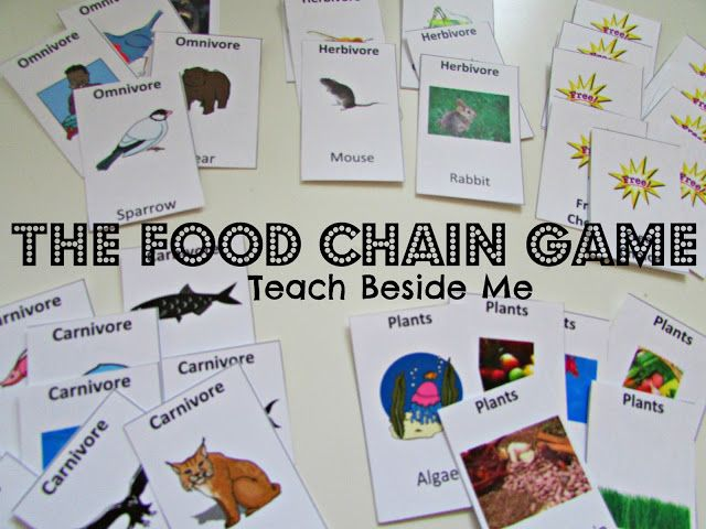 Free Printable Food Chain Game. (week 3)  May also be useful for Consumers (week 2).