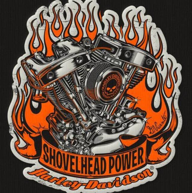 Harley Boss Hawg: 17 Best Images About Biker Stuff On Pinterest