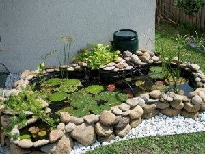 25 Best Ideas About Preformed Pond Liner On Pinterest Pond Liner Outdoor Ponds And Koi Pond Kits