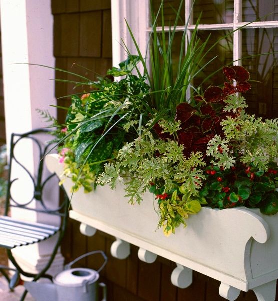 By amy ahlberglooking to liven up your home both inside and out get creative with window boxes - P allen smith container gardens ...