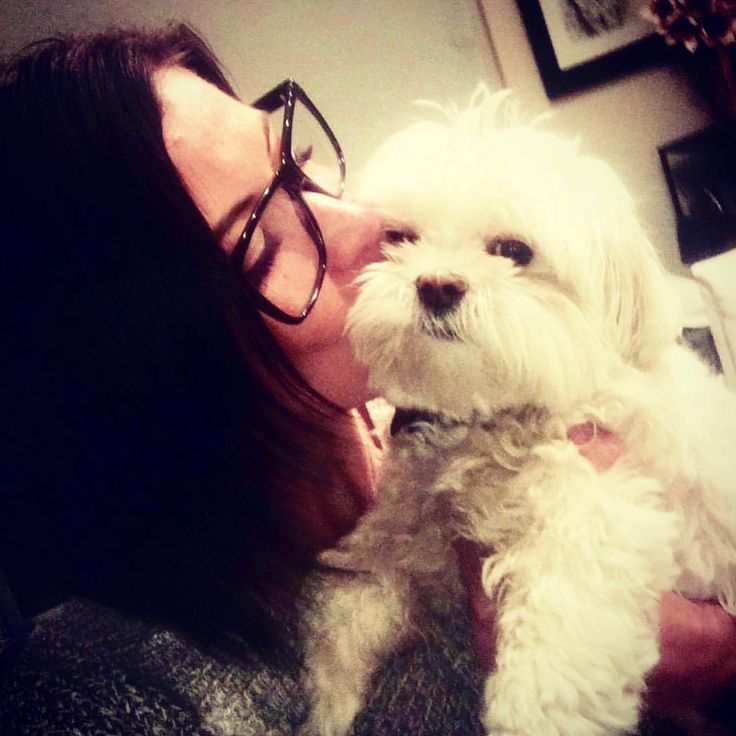 I love my time with my MeMaw but Im missing these kisses from Mom. . . . . . . Check out this video! Mom found a cyst in my ear and I have surgery scheduled for Thursday. Please pray! Im a senior Maltese with so many #adventures ahead. Anesthesia is never fun for us #furbabies. Thursday I will have my teeth cleaned and extractions the cyst removed and a skin tag on my eyelid/lash line removed with an electrocardiogram  I am thankful for my MeMaw for taking care of me with her trusted vet so…