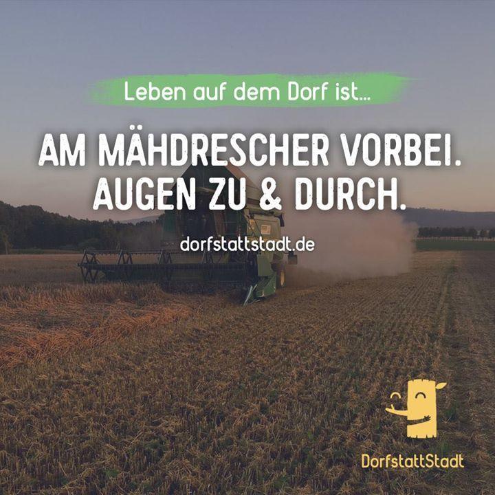 - http://ift.tt/2aYP7OB - #dorfkindmoment #dorfstattstadt