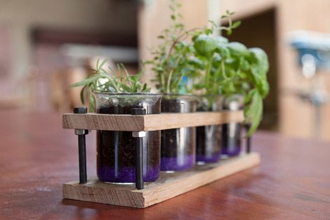Mini herb garden - Recycled Timber Homewares from Theory of Willow | Gallop Lifestyle #handmade #timber #kitchengarden