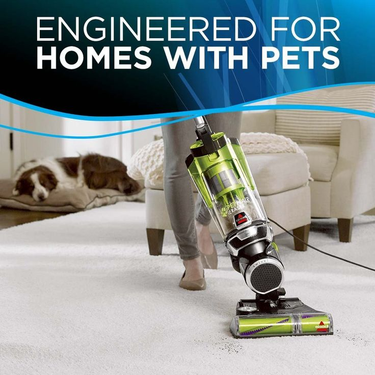Cleaning Up Fur with Bissell Pet Hair Eraser Vacuum