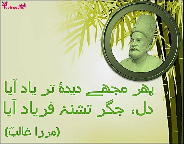 sania mirza biography pdf in urdu