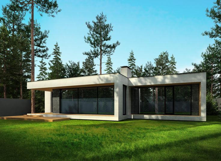 Современный одноэтажный дом в Комарово - ArchSide - Архитектурные и дизайн-проекты интерьеров в Санкт-Петербурге