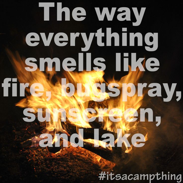 7 best We Love Jewish Camp! images on Pinterest Camping life - mcroberts security officer sample resume