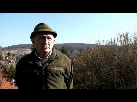 Gyuri bácsi beszél a méregtelenítésről | Györgytea.hu