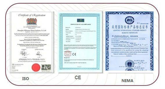Strut Channel Cable Tray Spring Nut (UL,CUL,NEMA,IEC,CE,ISO)