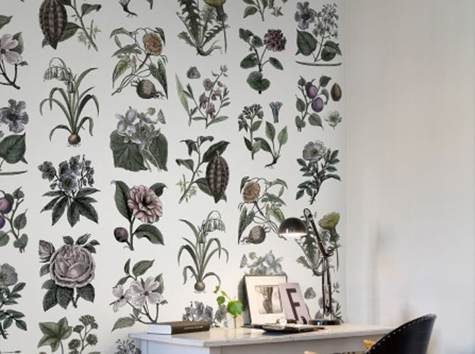 280 Best Papiers Peints   Wallpaper Images On Pinterest   Wall