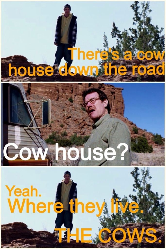 Decided to start watching Breaking Bad again. This scene always gets me