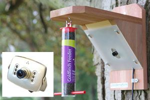 Bird feeder viewcam