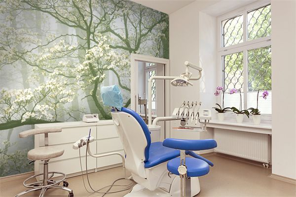Dental office decor can be brightened up with some beautiful floral murals!