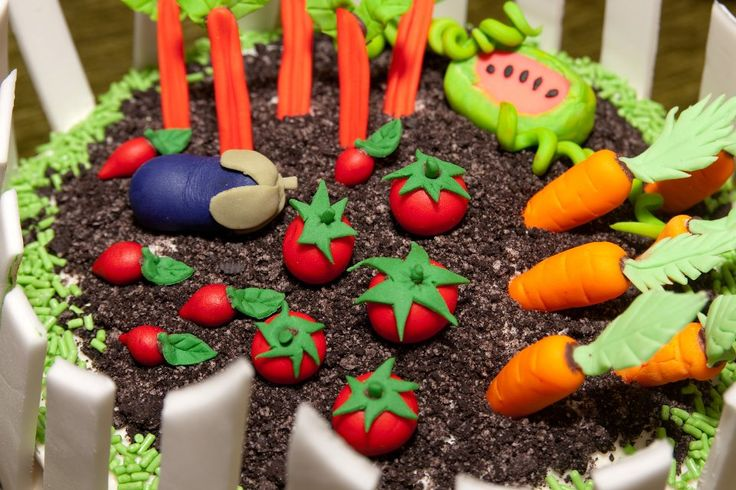Vegetable Garden Cake I Made For A 60th Birthday My