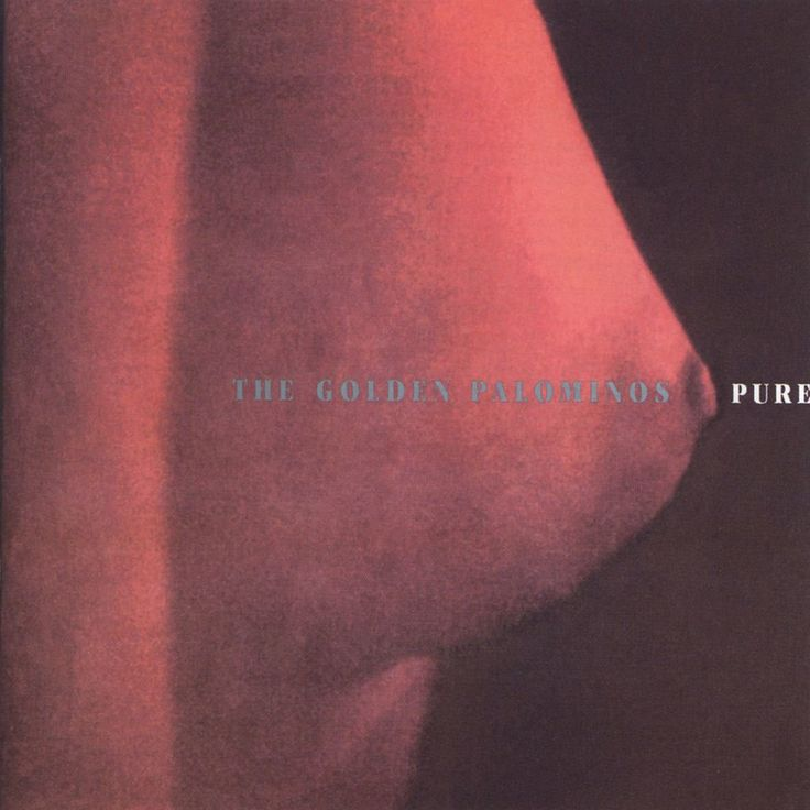 The Golden Palominos – Pure (1994)
