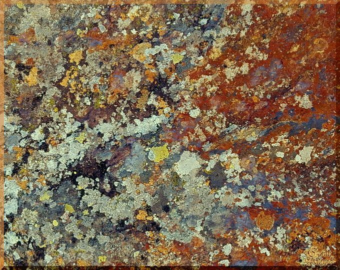 Abstract - 565 Абстракция, картины, картина маслом, сувенир, подарки