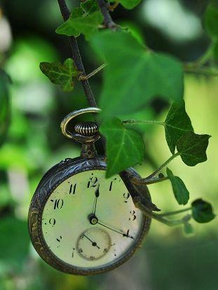 La gestion du temps et des priorités pour les chefs d'entreprise, les créateurs et les indépendants ! Www.cathsol.com #gestiondutemps #priorités #formationprofessionnelle