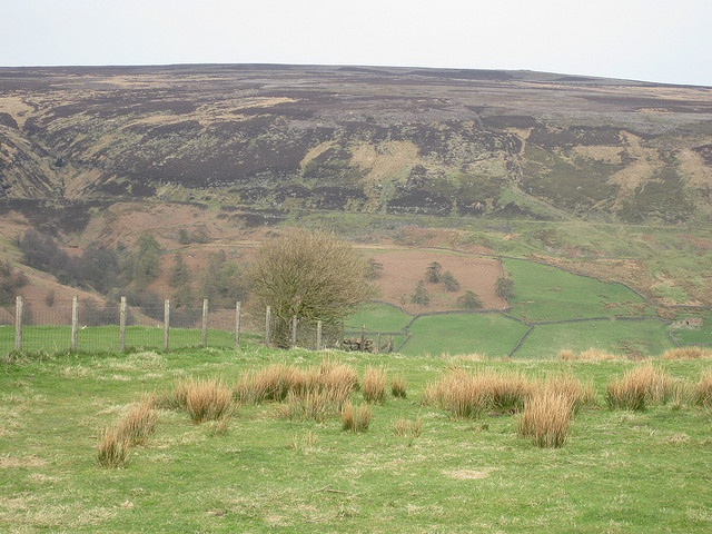 View from the Lion Inn, North Yorks Moors.