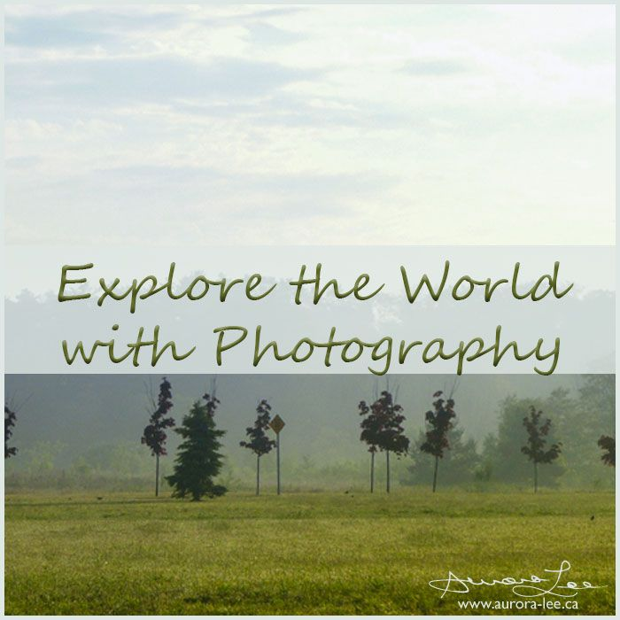 Five more photography tips - how to explore the world with photography - or any way - starting in your own back yard.
