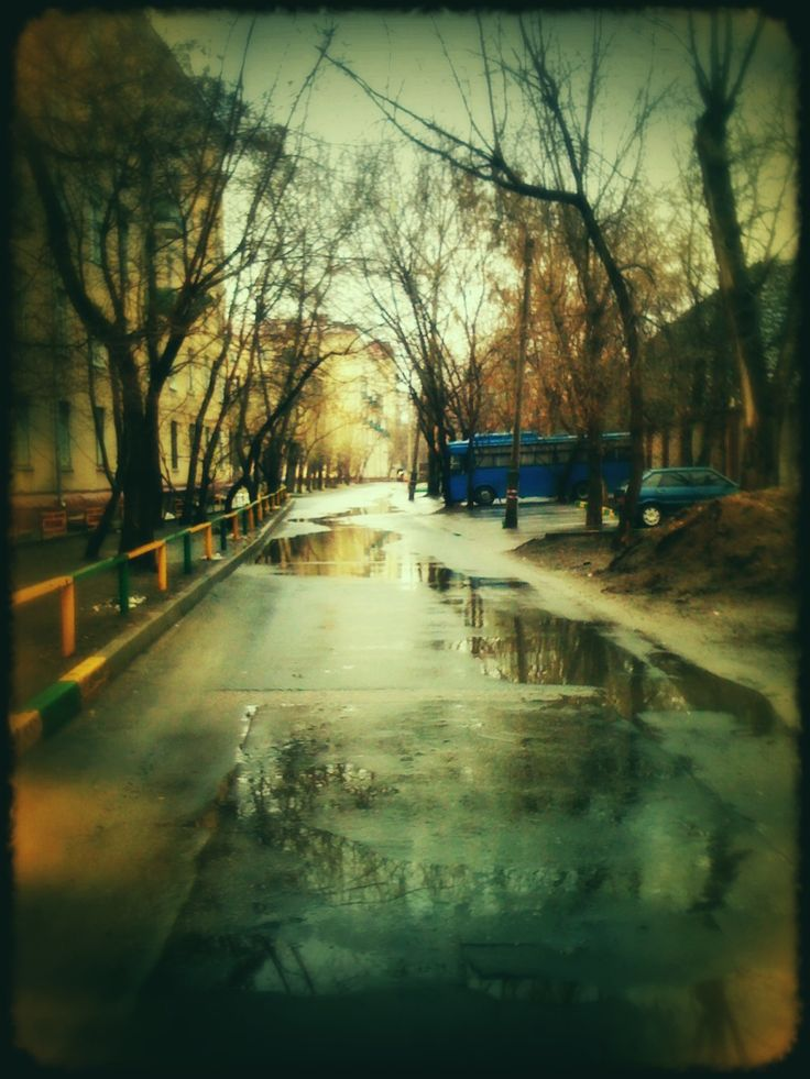 blur autumn