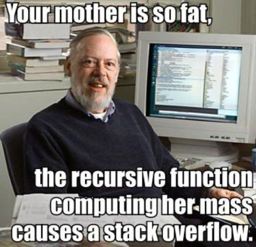 Your mother is so fat, the recursive function computing her mass causes a stack overflow. funny lol humor funny pictures funny pics funny images really funny pictures funny pictures and images geek meme nerd meme