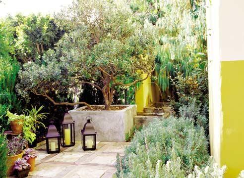 Средиземноморский садовый стиль