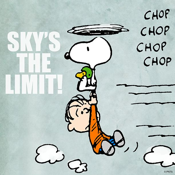 The Sky's the limit! Don't give up hope!  Dream high! Take courage & FLY!  SNOOPY of the Charlie Brown cartoon comic strip is drawn by Charles Schultz style as a helicopter with his beagle ears as the revolving blades, pulling Linus along. #DdO:) MOST #POPULAR RE-PINS -  https://www.pinterest.com/DianaDeeOsborne/hope-and-dreams/ - Linus really could USE that security blanket about now! From a pin with no Credit info: Researched, and I think it's re MetLife Insurance © [unknown year] PNTS