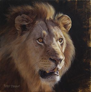 Royal Portrayal by Peter Stewart Oil ~ 14 inches x 14 inches