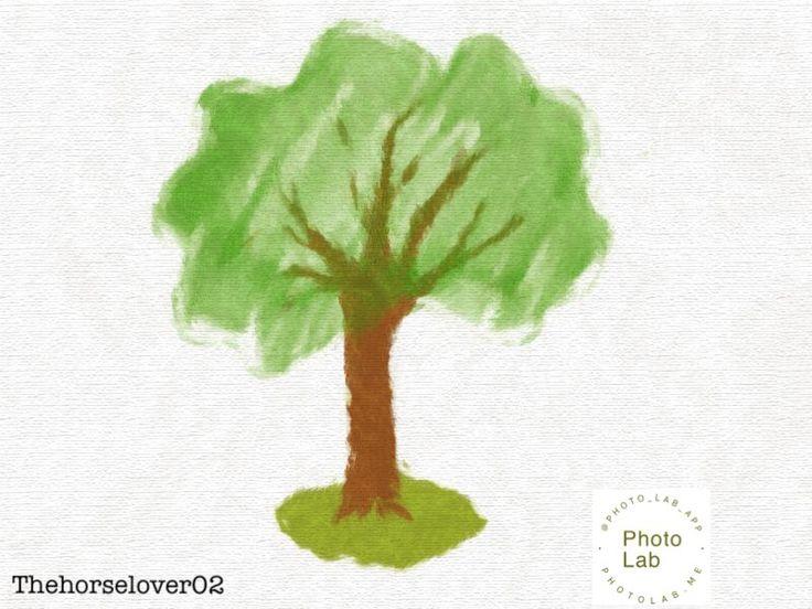Tree drawing made with ipad