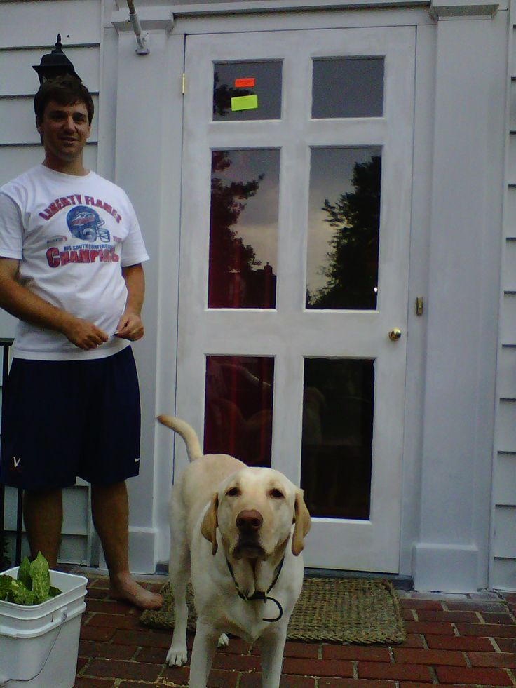 Noah (with a little help from Jeter) put a primer on the newly installed storm door. We purchased a 6 panel wood storm door from Pleasants Hardware. If youre planning on purchasing a new door, plan on spending around $1,000 (type of door, hardware, installation, paint, etc....it adds up quickly). Luckily, Noah and his dad are quite handy so we saved around $250 in installation fees.