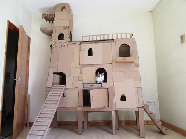 21 best cat playhouse images on Pinterest   Cardboard cat house ...